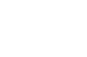 New Stratus Energy Inc.